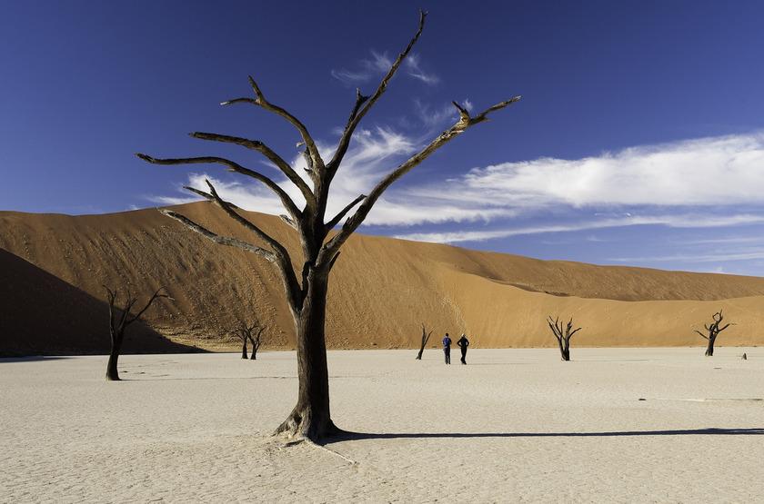 Death Vlei, Namibie
