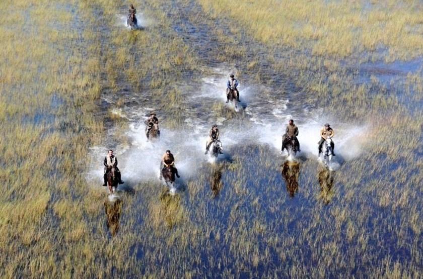 Chevauchée dans le delta de l'Okavango, Botswana