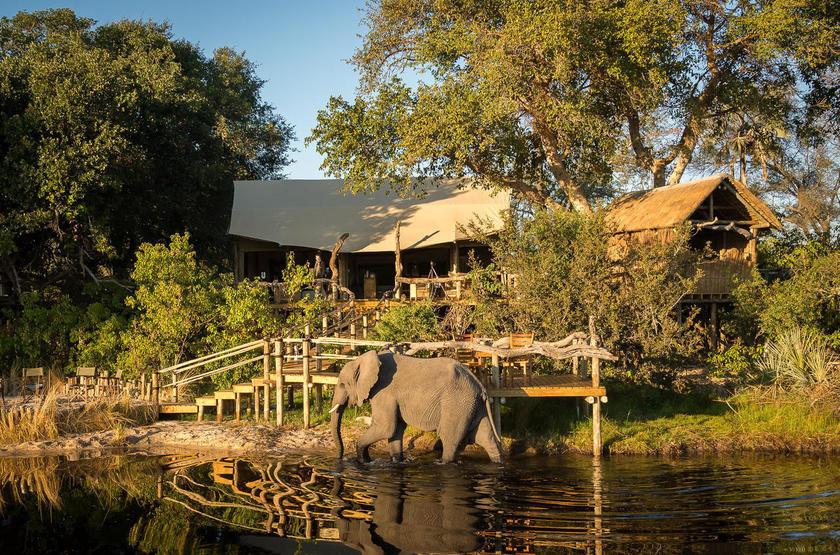 Little Tubu Tree Wilderness, Botswana