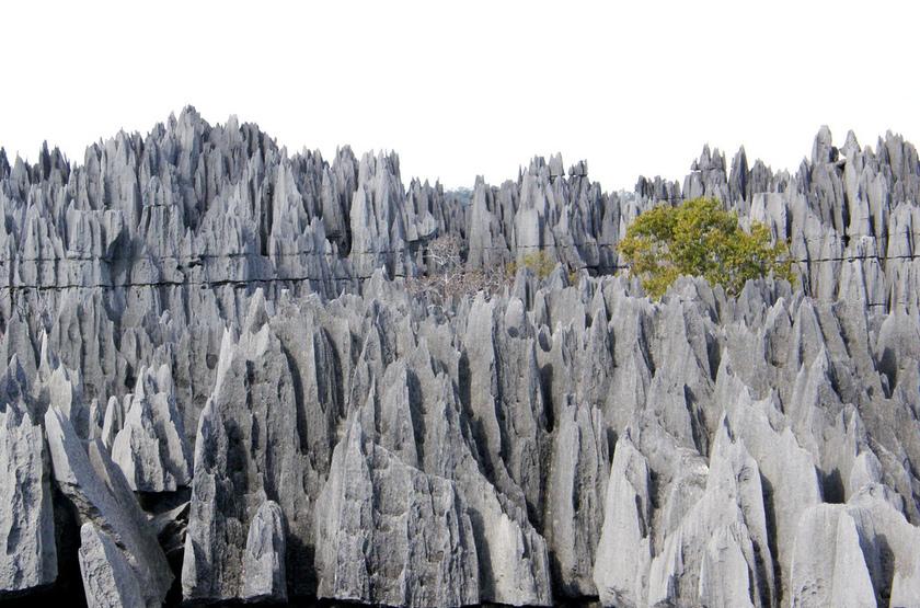 Grandes Tsingys, Madacascar