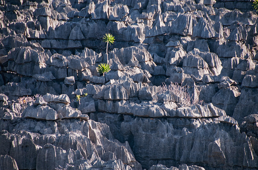 Tsingy ankarana slideshow