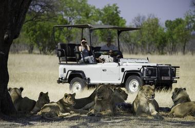 Hwange, Matusadona, Mana Pools : trois approches de safaris, voyage Afrique