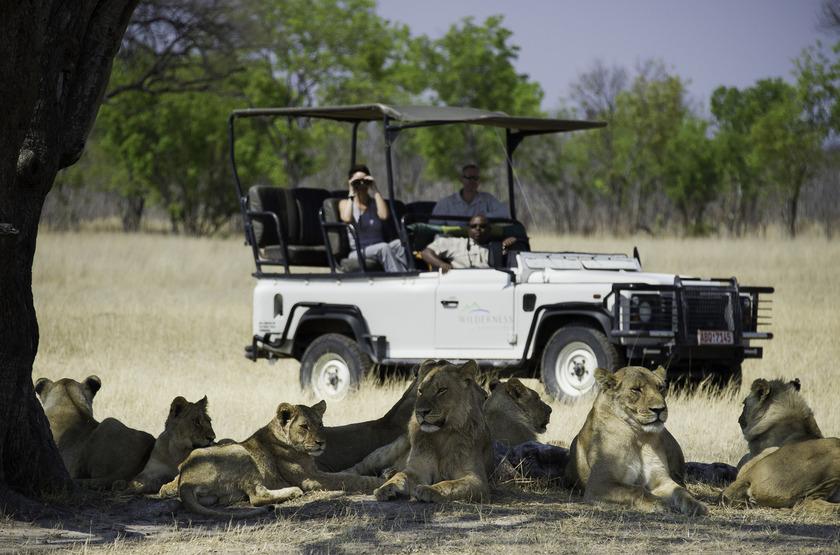 Safari en 4x4 dans le parc Hwange, Zimbabwe
