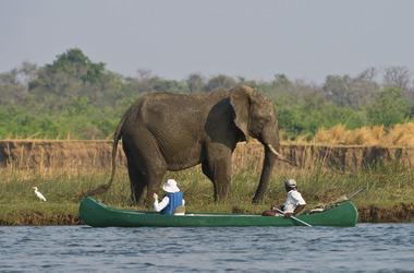 La descente du Zambèze en canoë, voyage Afrique