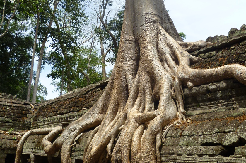 Temples d'Ankor, Cambodge