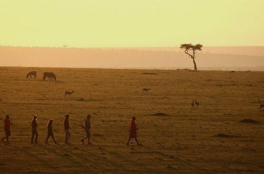 Safari à pied dans le Serengeti, Kenya