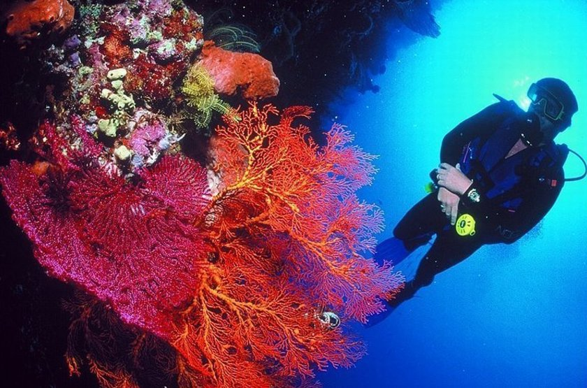 Voyage plongée à Bali, Indonésie