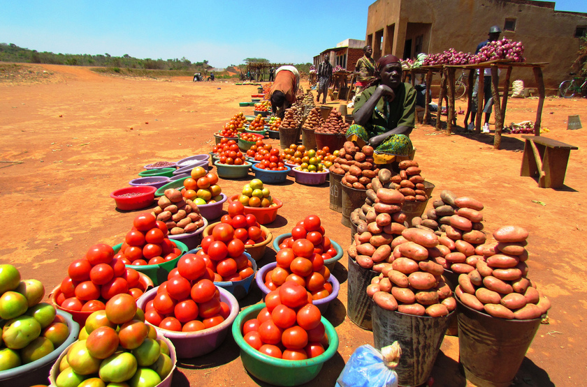 Marché local, Malawi