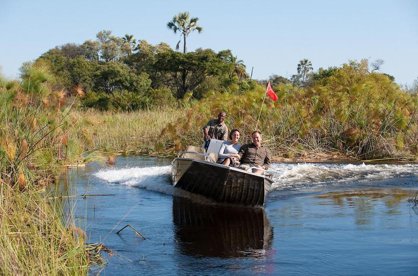 Safari en bateau, delta de l'Okavango, Botswana