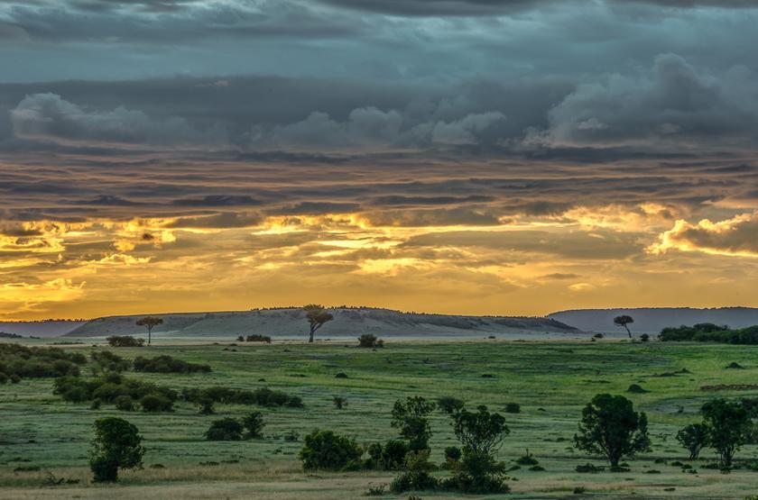 La vaste plaine de Masai Mara, Kenya