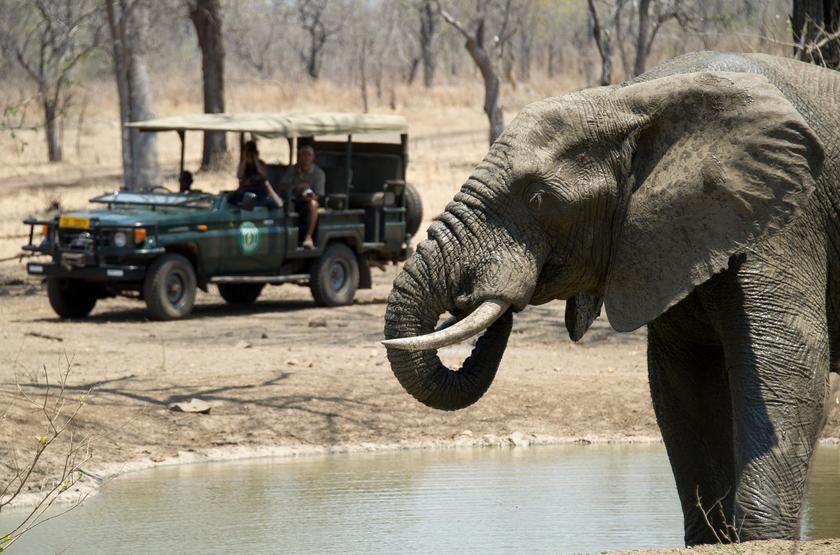 Safari en 4x4 au Malawi