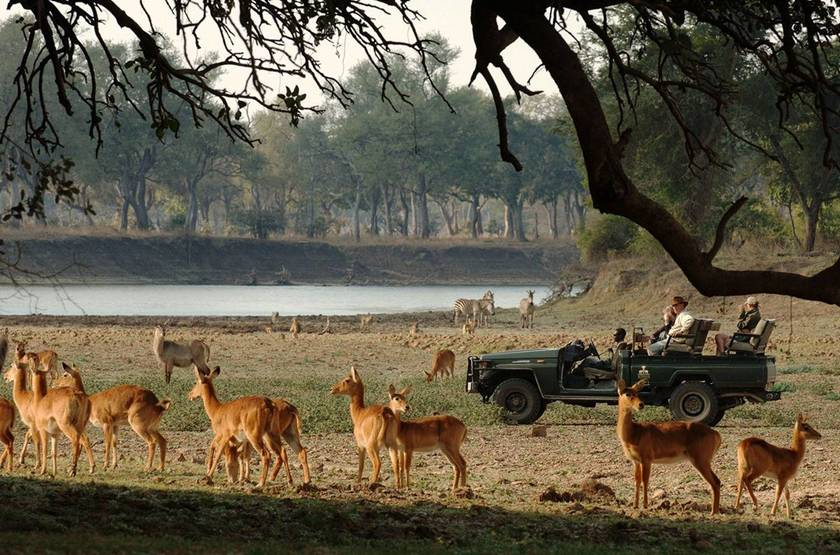 Safari en 4x4 à Chinzombo, South Luangwa, Zambie