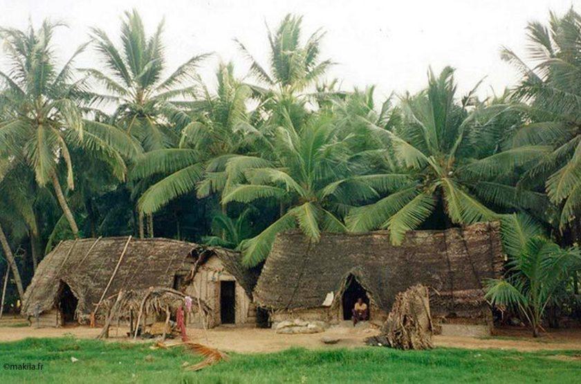 Village, Kerala, Inde du Sud