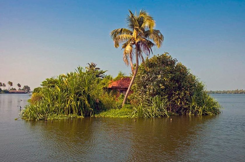 Ilots sur les Backwaters, Kerala, Inde