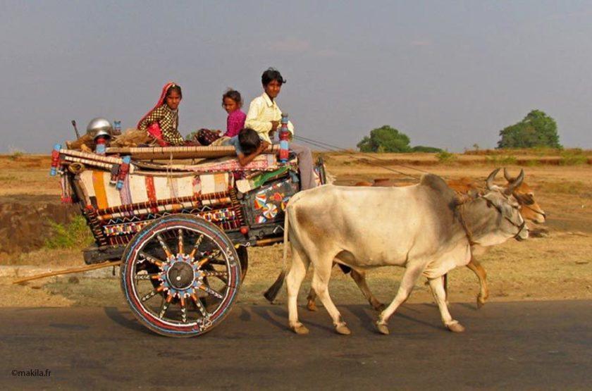 Lohar, Rajasthan, Inde