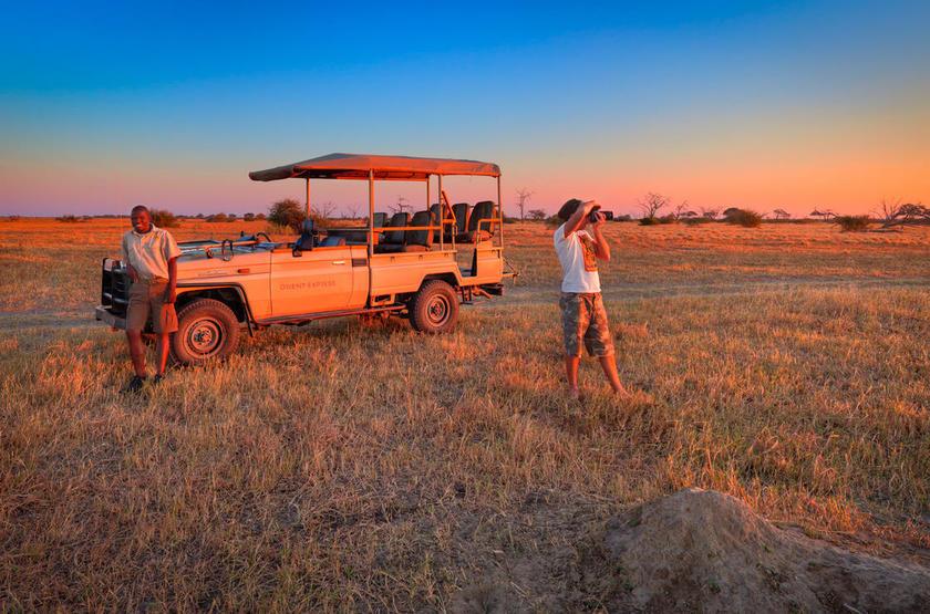 Safari en petit groupe au Botswana