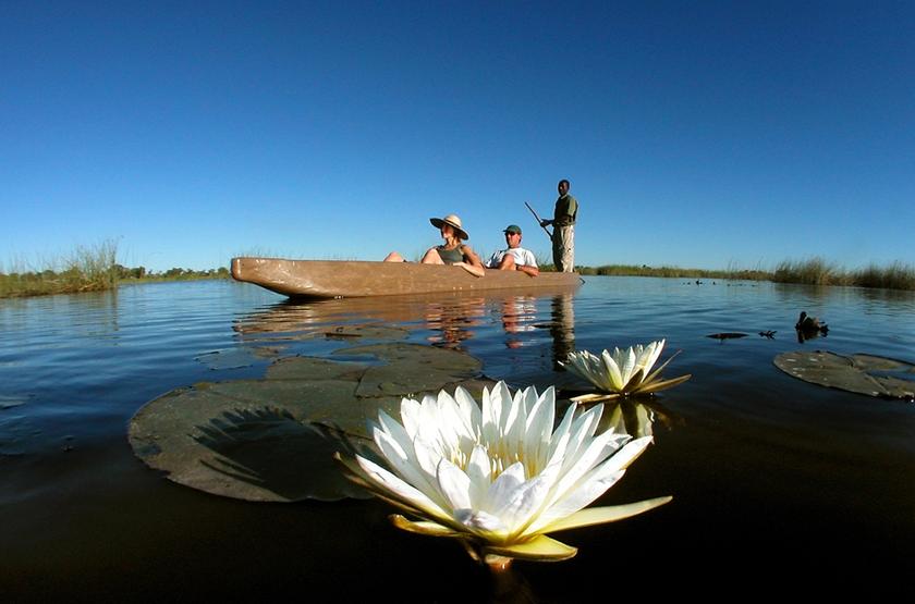 Safari en mokoro dans le delta de l'Okavango, Botswana