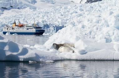 Croisière en Antarctique, une expérience unique, voyage Amériques