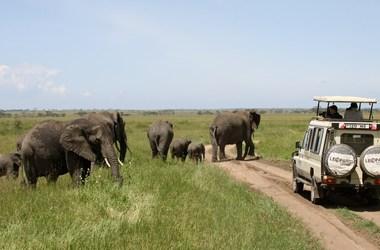 Circuit Tanzanie en petit groupe ou en privé, voyage Afrique