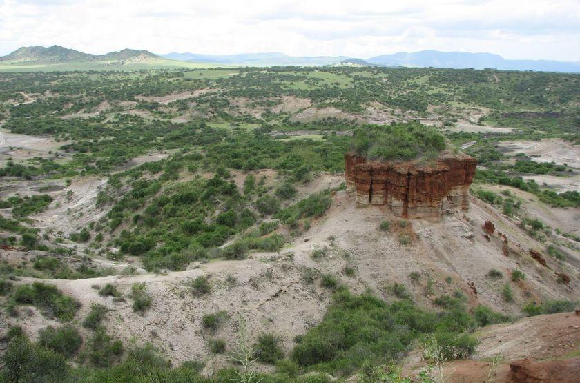 Gorges d'Olduvai, Tanzanie