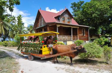 Les 3 îles principales des Seychelles : Mahé, La Digue et Praslin, pépites de l'Océan Indien, voyage Océan indien