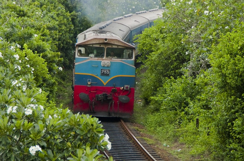 Train de Pinnawela, Sri Lanka