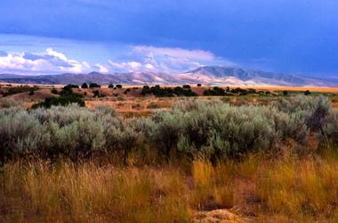 USA : Au pays du Grizzly et des grands espaces dans les parcs du Wyoming et du Montana, voyage Amériques