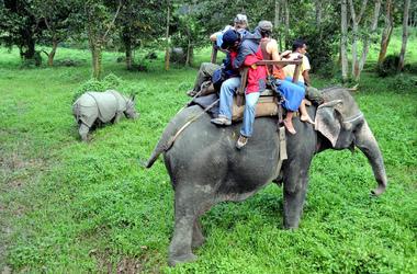 Sur les traces du rhinocéros unicorne et du tigre dans le parc de Chitwan, voyage Asie