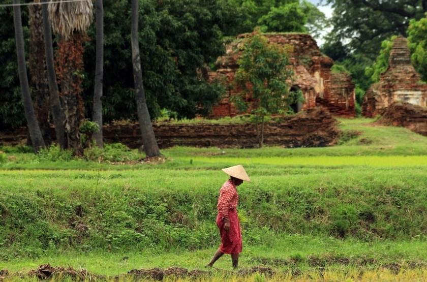 Dans la régoin de Bagan, Birmanie