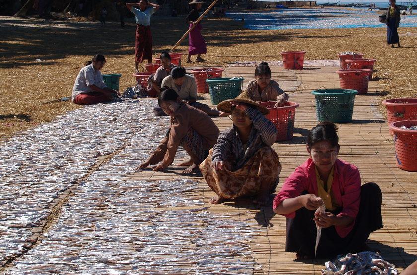 Marché aux poissons, Ngapali, Birmanie