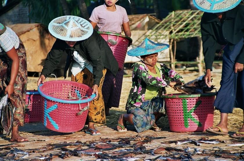 Séjour à Ngapali, Birmanie, pêcheurs
