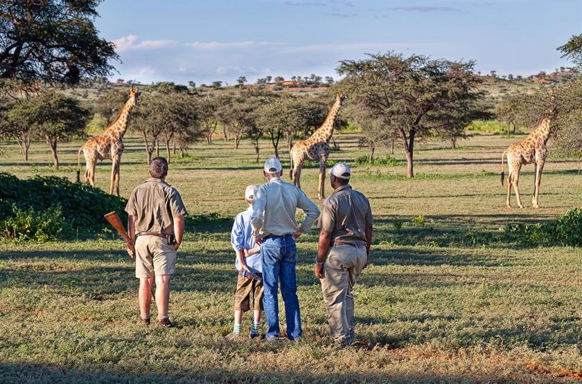 Tswalu, Afrique du Sud, safari à pied