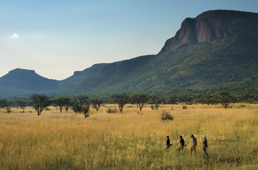 Afrique du Sud, réserve de Marakele, safari à pied