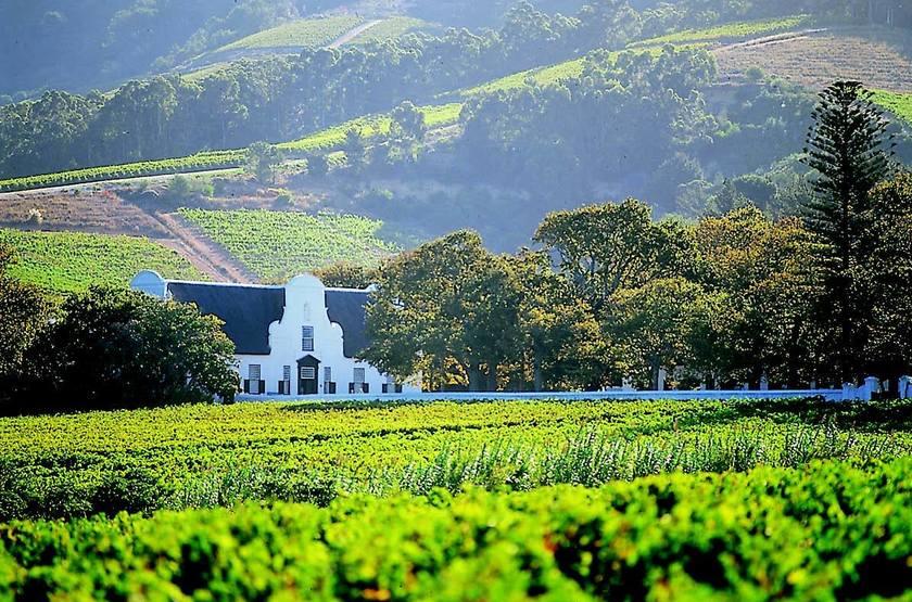 La Route des Vins, Afrique du Sud