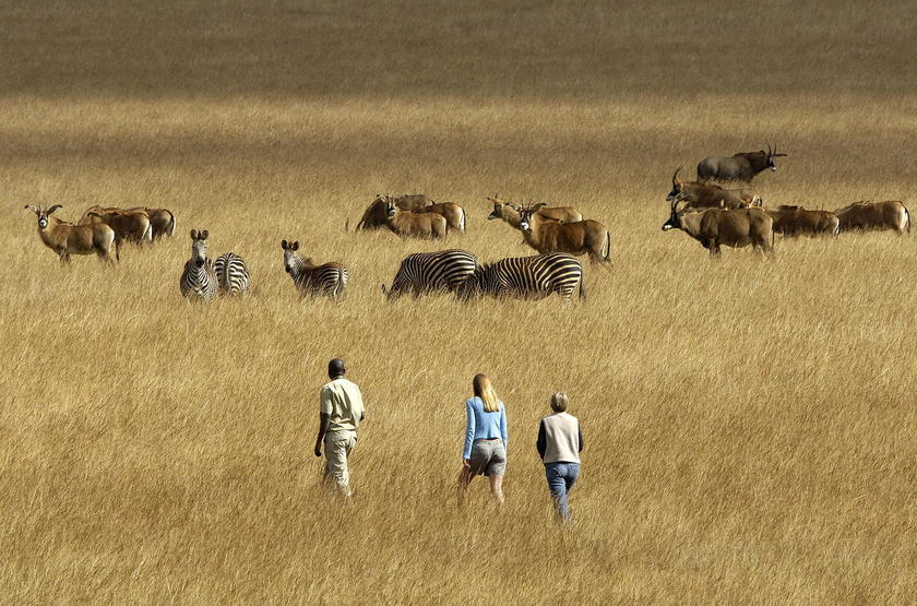 Safari à pied Malawi, Chelinda Camp