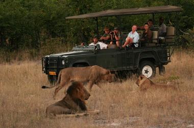 Magnifique Afrique : les plus beaux safaris à pied au Zimbabwe, voyage Afrique