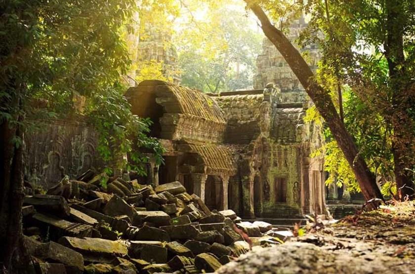 temple Ta Phrom, Angkor, Cambodge