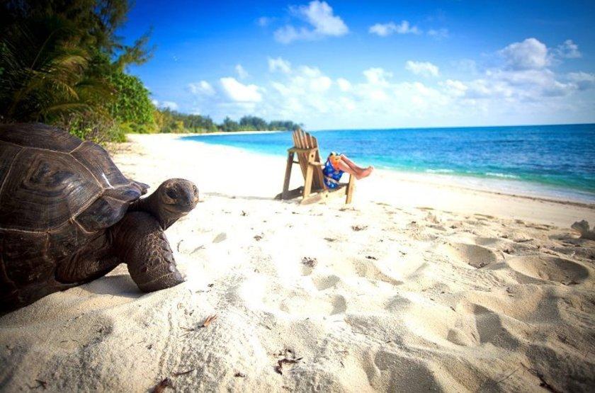 Sur la plage de Denis Island, Seychelles