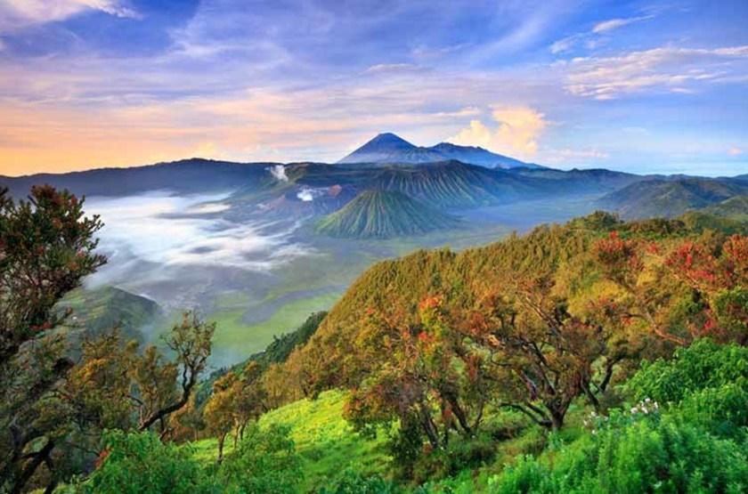 Parc National Tenger Semeru, volcan Bromo, Indonésie