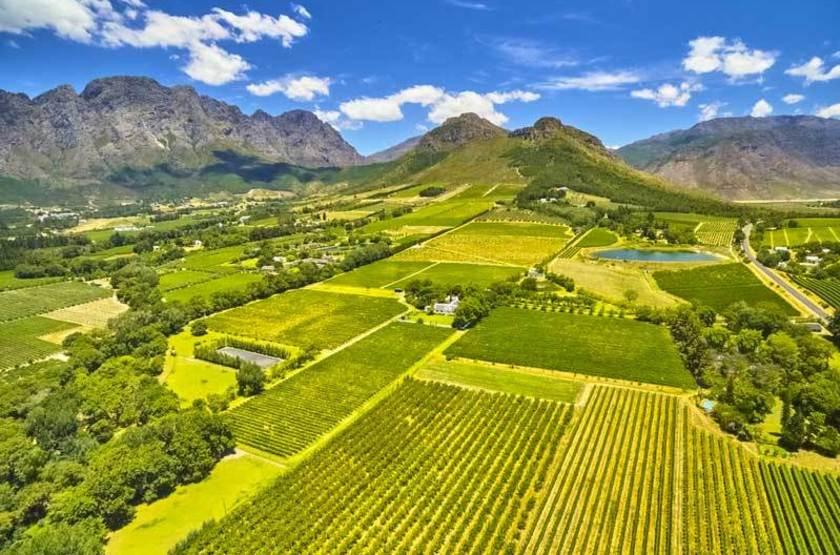 Vue des vignes de Franshoek, Afrique du Sud