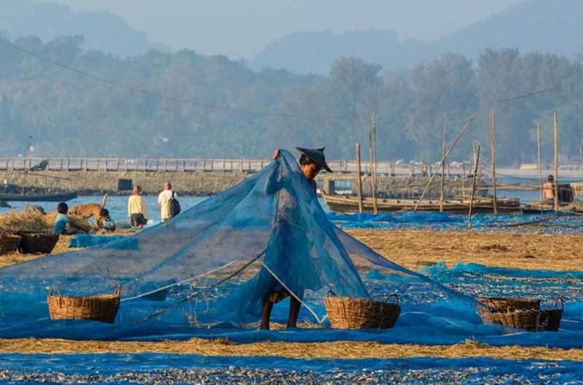 Séchage du poisson à Ngapali, Birmanie