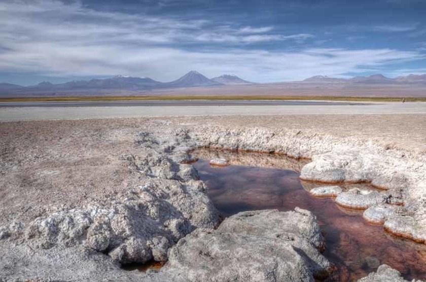 Lagune Cejar, désert d'Atacama, Chili