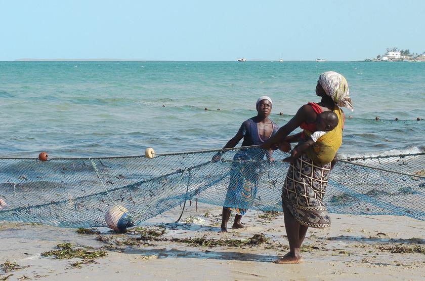Pêche à Vilancoulos, Mozambique
