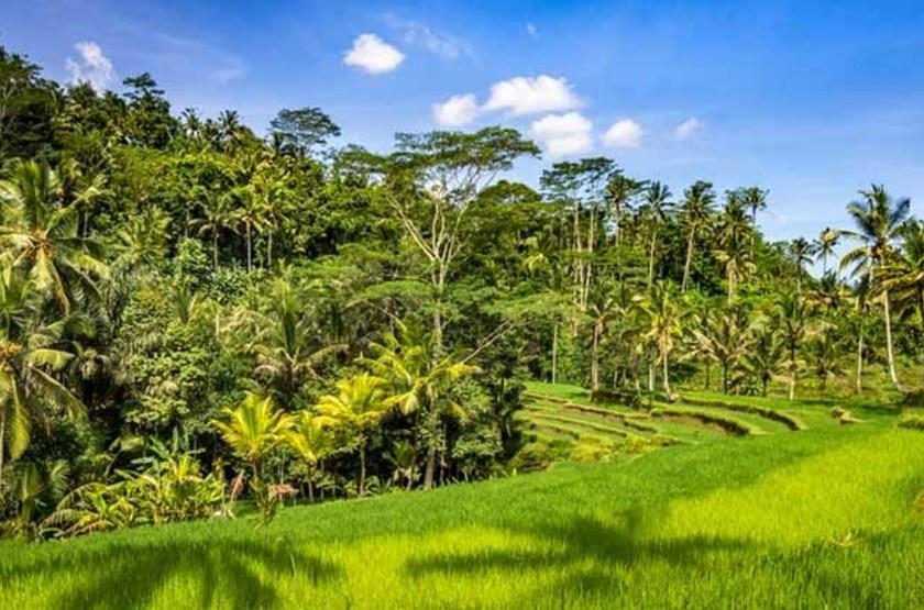 Entrée du temple Gunung Kawi, Indonésie