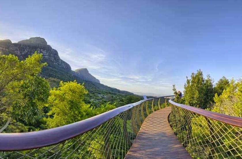 Jardin Botanique National de Kirstenbosch, Cape Town