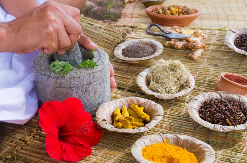 médecine Ayurvedique, Inde