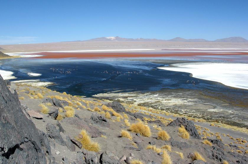 Uyini, Bolivie