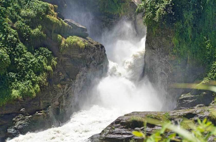 Parc national Murchison Falls, Ouganda