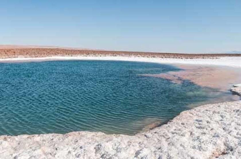 Lagune de Baltinache, désert d'Atacama, Chili