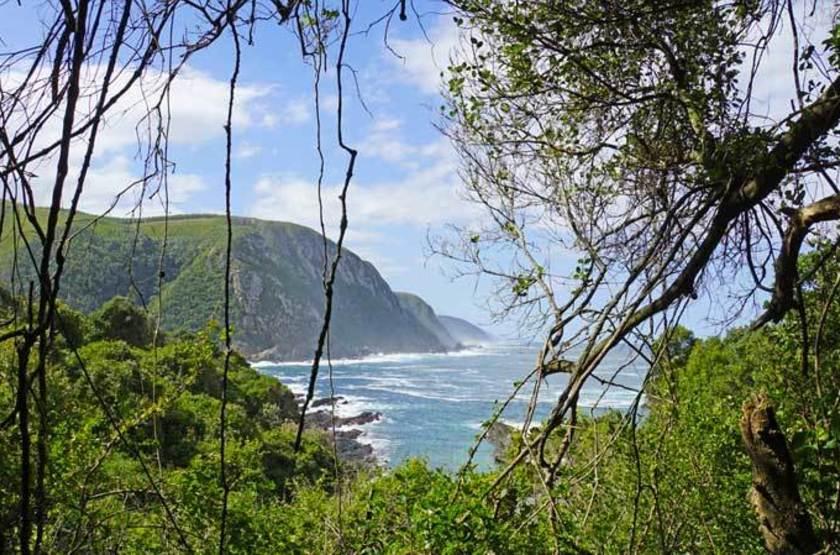Parc National Tsitsikamma, Afrique du Sud
